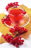 Cup of red tea and viburnum berries Royalty Free Stock Photos