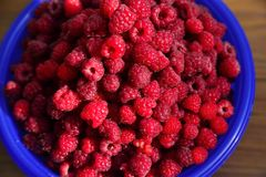 Cup of ripe raspberry Royalty Free Stock Images