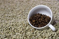 Cup of roasted beans. Stock Photos