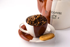 Cup of roasted brown coffee beans. On white  background in coffee cup wilt coffee pot stock image
