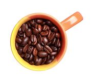 Cup with roasted coffee beans Stock Photos