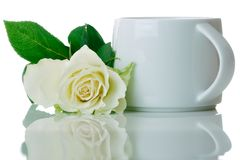Cup and rose Stock Images