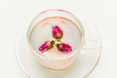 Cup of rose flower tea Royalty Free Stock Photography