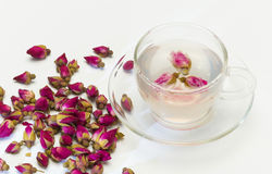 Cup of rose flower tea Stock Image