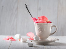Cup with rose petals on white background. marshmallow stock photo