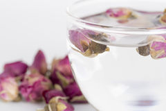 A cup of rose tea. With dried rose flower on white background stock photography