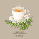 Cup of rosemary tea Royalty Free Stock Photo