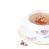 Roses tea. Royalty Free Stock Photo