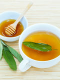 A cup of sage tea with fresh sage and honey. Stock Photography