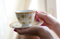 Cup and saucer in female hands Royalty Free Stock Photography