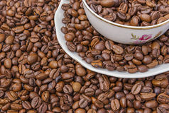 Cup and saucer filled with coffee beans Royalty Free Stock Photos
