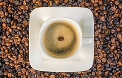 Cup of coffee on freshly roasted coffee beans as a background stock photos