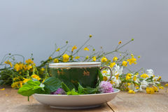 Cup and saucer with fresh mint leaves and clover flowers. Yellow Stock Photography