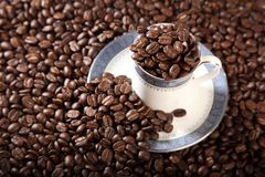 Cup and saucer full of roasted coffee beans Stock Images
