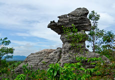 Cup shaped stone. The Pa Hin Ngam National Park in Chaiyaphum, Thailand Stock Photo