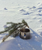Cup in the snow. Winter sketch in the forest Stock Photos