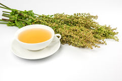 Cup of sorrel tea Royalty Free Stock Photos