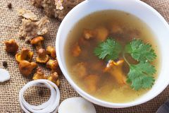 Cup of soup with chanterelles. With onion and bread royalty free stock images