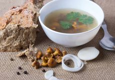Cup of soup with chanterelles. With onion and bread stock image