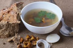 Cup of soup with chanterelles. With onion and bread stock photo