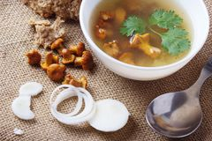 Cup of soup with chanterelles. Onion in burlap fabric stock photography