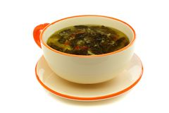 Cup of soup with fresh sorrel Royalty Free Stock Photo