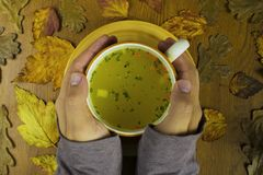Cup of soup in hands in autumn Royalty Free Stock Image