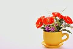 A Cup of Spring stock photos