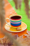 Cup of steaming black coffee on Autumn morning Royalty Free Stock Image