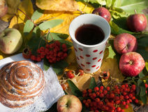 A cup of strong black tea, sweet bun with raisins, ash berries, apples and colorful autumn leaves on a stone surface Stock Image