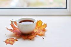A cup of strong black tea Royalty Free Stock Photos