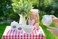 Cup of tasty tea served in the garden. Cup of tasty tea served in the summer garden Stock Photos