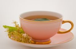 Cup tea Royalty Free Stock Photography