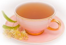 Cup tea Stock Photography