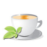 Cup of tea. With green leaf Stock Images