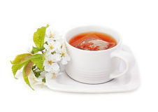 Cup of tea . Stock Photo