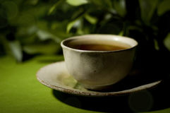 Cup of tea. And twig with dark background stock images