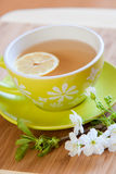 Cup of tea. With fresh lemon royalty free stock photos
