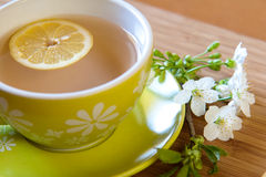 Cup of tea. With fresh lemon stock image