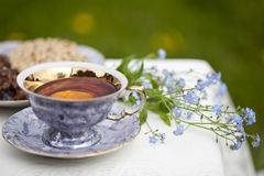 Cup of tea. And biscuits outdoor royalty free stock photo