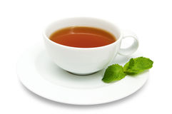 Cup of tea. With mint leaves isolated on a  white background Stock Photography