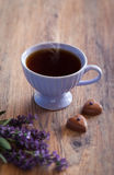 Cup of tea. Cup of hot tea with lavender and chocolate candies with lavender, selective focus Royalty Free Stock Photography