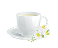 Cup of tea. With chamomile flowers Stock Photos