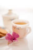 A cup of tea Royalty Free Stock Photo