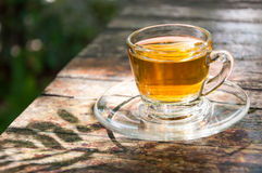 Cup of tea. With shadow twig Stock Image
