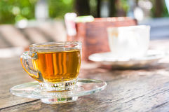 Cup of tea. With shadow twig Stock Photos