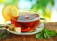 Cup of tea. Stock Photo