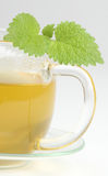 Cup of tea. Close up of cup of green tea stock photography