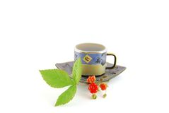Cup of tea. With brunch of red berry stock images