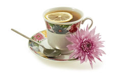 A cup of tea. With a spoon and pink chrysanthemum flower on a white background Royalty Free Stock Image